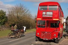 (LRO_1) Tags: greatbritain england horse bus nikon unitedkingdom routemaster essex rm d60 aec nikond60 staplefordabbots passingfordbridge route175a wlt857 rm857 camerabag2