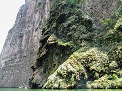 """Cañon del Sumidero: cascade assèchée qui a sculté la roche <a style=""""margin-left:10px; font-size:0.8em;"""" href=""""http://www.flickr.com/photos/127723101@N04/25591646962/"""" target=""""_blank"""">@flickr</a>"""