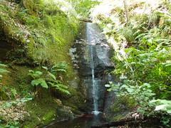 La cascade de la Combe (cristoflenoir) Tags: cascade naturisme cvennes