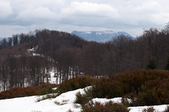 a Gutin-hegység / the Gutin Mountains (debreczeniemoke) Tags: winter mountains landscape hegy tájkép gutin tél rozsály gutinhegység igniş olympusem5 gutinmountains