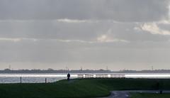 20160211-1353-20 (donoppedijk) Tags: nederland nl noordholland uitdam