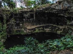 "Valladolid: la cenote Zaci <a style=""margin-left:10px; font-size:0.8em;"" href=""http://www.flickr.com/photos/127723101@N04/25657831020/"" target=""_blank"">@flickr</a>"