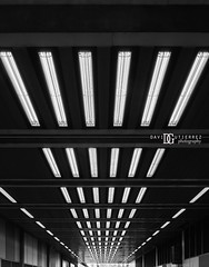 Beech Street Tunnel, Barbican Estate, London, UK (davidgutierrez.co.uk) Tags: road street city uk greatbritain travel light england people urban blackandwhite bw white black streets colour london art public monochrome beautiful architecture buildings photography lights blackwhite nikon europe cityscape photographer unitedkingdom britain interior capital transport tunnel structure barbican londres londra cityoflondon blackandwhitephotography tfl centrallondon  londyn beechstreet    barbicanestate d810 nikon2485mm nikond810 davidgutierrez londonphotographer davidgutierrezphotography nikon2485mmf3545gedvrafsnikkor