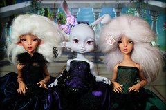lillycat trio (lauradavison) Tags: rabbit bunny art doll group tan ombre constantine caramel bjd trio resin anthro msd lillycat loonette cerisedolls