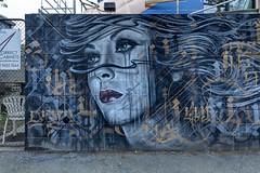 Mayo Destroy Collingwood 2016-04-08 (6D_1052-4) (ajhaysom) Tags: streetart graffiti collingwood australia melbourne mayo destroy canon1635l canoneos6d