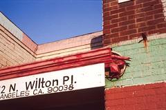 N. Wilton (ADMurr) Tags: leica blue red film 50mm la fuji place purple slide summicron chrome hollywood angular m4 wilton 2015
