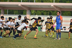 _DSC6036 (acsprugby) Tags: rugby national acs primary endeavor 2016
