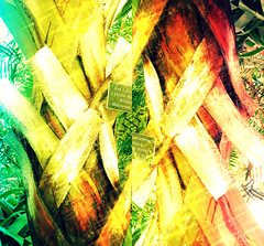 HSS ABSTRACT PALM TREE RAINBOW (Visual Images1) Tags: two abstract rainbow diptych palmtree comoconservatory hss sliderssunday ipiccy