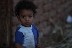 A Nubian Village Child - Luxor, Egypt (Ferdous Firoz Amin) Tags: boy village child egypt luxor nubian
