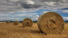 Balles de foin avant l'orage (R - P Photography) Tags: nature clouds rural landscape switzerland suisse fribourg agriculture nuages paysage champ foin paille