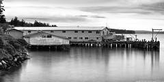 2016-04-22 Shannon Point Salmon Cannery (B/W) (Long Exposure) (2048x1024) (-jon) Tags: longexposure bw monochrome night blackwhite pacificnorthwest seafood pugetsound sanjuanislands anacortes washingtonstate pnw cannery skagitcounty guemeschannel ndfilter salishsea neutraldensityfilter fidalgoisland salmoncannery variableneutraldensityfilter kiwaniswaterfrontpark shannonpoint a266122photographyproduction