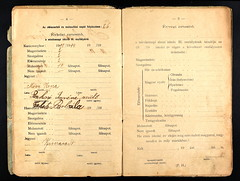 33162_620303988_0175-00199 (mkvirg) Tags: hungary passport immigration ellisisland magyarorszg emigration hungarians kereszteltekanyaknyve magyartlevl hungarycivilregistration llamianyaknyvek hzasultakanyaknyve