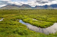 (Joo Lus / Fotografia) Tags: usa alaska landscape places subjects