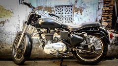 Thoiron_India (2 of 7).jpg (Thoiron) Tags: india pushkar rajasthan inde royalenfield in