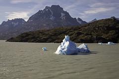 Grey Lake Iceberg (surfneng) Tags: chile park sky patagonia mountain snow southamerica water clouds lago rocks outdoor glacier torresdelpaine iceberg greylake