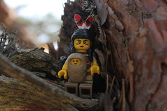 family portrait (OlleMoquist) Tags: toy lego indian legophotography