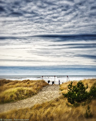 Beach Play (mjardeen) Tags: ocean trees sky texture beach grass kids clouds oregon landscape foot seaside play pacific outdoor path f14 or patterns prints konica a7ii 57mm landscapesshotinportraitformat a7m2
