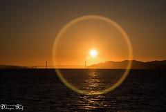 Golden Gate Bridge (Raf Debruyne) Tags: usa landscape eos lasvegas nevada 5d vs mk3 mark3 24105mm 24105mmf4 canonef24105mmf4lusm canon24105mmf4 5dmkiii 5dmarkiii canoneos5dmk3 rafdebruyne debruynerafphotography debruyneraf canoneos5dmkill