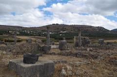imgp3739 (Mr. Pi) Tags: morocco column volubilis archaeologicalsite