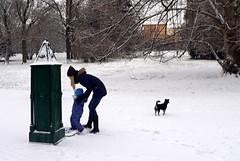 First Snow (Kojotisko) Tags: streetphotography brno creativecommons czechrepublic streetphoto panasoniclumixdmcft2 lumixdmcft2