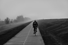 Holland - Enjoy the struggle (ParadoX_Design) Tags: auto road trees winter blackandwhite bw white mist black cars netherlands dutch bike fog way grey lights vanishingpoint bomen nikon long cyclist tour zwartwit path stripes horizon helmet nederland biker autos dyke dijk polder bas arbre pays baum flevoland weg niederlande lampen letour strepen fietspad bik fietser racefiets verdwijnpunt oostvaardersdijk volhouden d5300 levvy perceverance