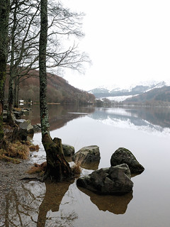 Trees and Boulders on the banks of the beautiful Loch Lubnaig - Scotland  on a cold January day. And then someone tossed in a pebble to break the stillness of the water.