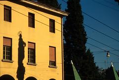 Piazza Malpighi, Bologna (Francesco Merini) Tags: shadows ombre bologna cypresses sanfrancesco cipressi colonnadellimmacolata piazzamalpighi tombedeiglossatori