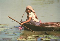 Kampuchea Woman In Boat (mrsris) Tags: woman boat fishing postcard oxfam kampuchea