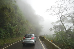 Narrow, bendy, neverending, foggy road down to the coastal plain (eikzilla) Tags: taiwan alishan ruili fenqihu