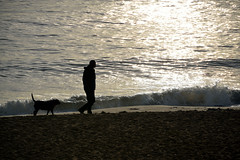 FOLLOW MY LEAD  -  (Selected by GETTY IMAGES) (DESPITE STRAIGHT LINES) Tags: morning autumn sea england dog sunlight man seaweed beach nature water beauty rock digital sunrise dawn bay coast kent seaside sand aperture nikon october rocks flickr surf day dof bigma tide tripod shoreline silhouettes sigma canine iso coastal shore getty coastline naturalbeauty botanybay tidal mothernature magichour goldenhour gettyimages manfrotto d800 firstlight broadstairs themagichour thegoldenhour paulwilliams onemanandhisdog lowlightphotography sigma50500mm outdoorphotography sunrisephotography botanybaykent nikond800 botanybaybroadstairs sigma50500mmf4563apodgoshsm despitestraightlines sunriseoverbotanybay botanybayinbroadstairs despitestraightlinesatgettyimages gettyimagesesp