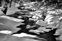 DSC_0268 - Pennypack Creek (Athtart) Tags: winter snow mill monochrome creek river saw january pa lane delaware horsham rule alternate week3 the pennypack tributary pennypackcreek theme thirds 52in2016