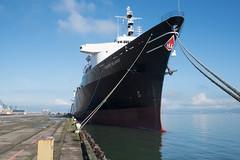 Pier 80 Horizon Reliance 1-2016 (daver6sf@yahoo.com) Tags: ship baybridge sanfranciscobay containership pier80 portofsanfrancico horizonreliance