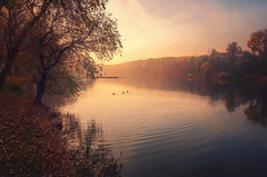 Calmness (Psztor Andrs) Tags: autumn trees light sunset red brown sun lake reflection nature water yellow fog rural forest landscape photography pond nikon hungary mood nikkor leafs 1870mm andras pasztor d5100