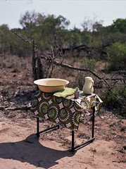 Washing up for lunch (chillbay) Tags: africa southafrica krugernationalpark kruger tandatula krugerafrica