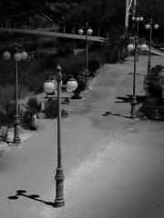 Light way (christianhaward) Tags: light shadow luz sepia postes blackwhite sombras parqueelloa