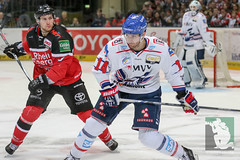 "DEL16 Kölner Haie vs. Adler Mannheim 24.01.2016 120.jpg • <a style=""font-size:0.8em;"" href=""http://www.flickr.com/photos/64442770@N03/24844429261/"" target=""_blank"">View on Flickr</a>"