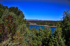 Agua entre verde (J.Gargallo) Tags: espaa verde azul canon eos spain agua arboles pantano cielo castelln comunidadvalenciana eos450d 450d sitjar canon450d ribesalbes canonefs18200