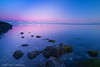 Pink dawn / Zeelandbrug / Oosterschelde (zzapback) Tags: nikon zeeland 20mm zonsopgang oosterschelde zeelandbrug colijnsplaat d810 zzapback robdevoogd