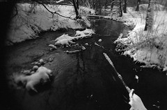 4 (rtw1r) Tags: travel winter blackandwhite bw film nature forest 35mm russia ilford analogphotography filmphotography  ilfordpan400 pan400 rtwlr