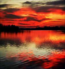 Sunset (Katarina 2353) Tags: lake film nature landscape nikon serbia belgrade beograd srbija adaciganlija katarinastefanovic katarina2353