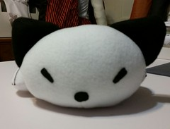kitty plush face (Pywackyt) Tags: stuffedtoy cat toy kitty plush sleepy stuffedanimal plushie softtoy plushtoy