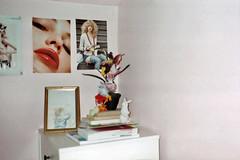 (Anne-Sophie Landou) Tags: pink girls stilllife plant bunny film floral analog corner french bedroom girly interior flash indoor kitsch images lips contax walls interiordesign vegetal