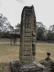 "Copan Ruinas: la Plaza Principal et ses stèles <a style=""margin-left:10px; font-size:0.8em;"" href=""http://www.flickr.com/photos/127723101@N04/25946793473/"" target=""_blank"">@flickr</a>"