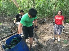 27-Env&CivSoc-World-Water-Day-LCK-Cleanup-26Mar16 (Habitatnews) Tags: mangrove capt nus worldwaterday limchukang iccs