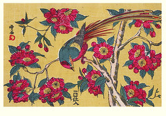Camellia and golden pheasant (Japanese Flower and Bird Art) Tags: flower bird art japan print japanese golden pheasant camellia japonica woodblock ukiyo phasianidae pictus chrysolophus theaceae readercollection