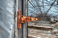 Gordon's Greenhouses (RHS in NS) Tags: abandoned glass novascotia industy greenhouse gordon oxford derelict cumberlandcounty gordonsgreenhouses