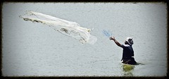 Catch of the Day (The Spirit of the World) Tags: food woman india net water rural fishing pond asia roadtrip local fishingnet southernindia