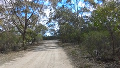 Para Wirra 24 (WEA Ramblers) Tags: hiking australia bushwalking southaustralia parawirra yattalunga fayharding