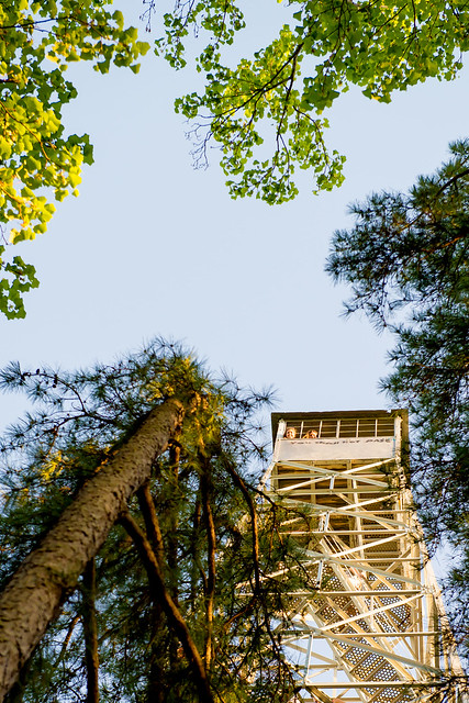 Hoosier National Forest - Hickory Ridge Lookout Tower - Martin Hollow Trail - April 23, 2016