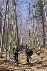 IMG_7699 (ckhaley) Tags: new white mountain mountains rock rocks hiking trails newhampshire whitemountains hampshire hike mount trail morgan squamlake scrambling mountmorgan mountpercival crawfordridgepoletrail mountpercivaltrail morganpercivalconnector